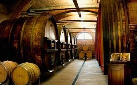 Vinsmaking - Marchesi di Barolo